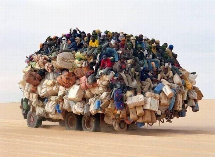 Tylko w Afryce 12