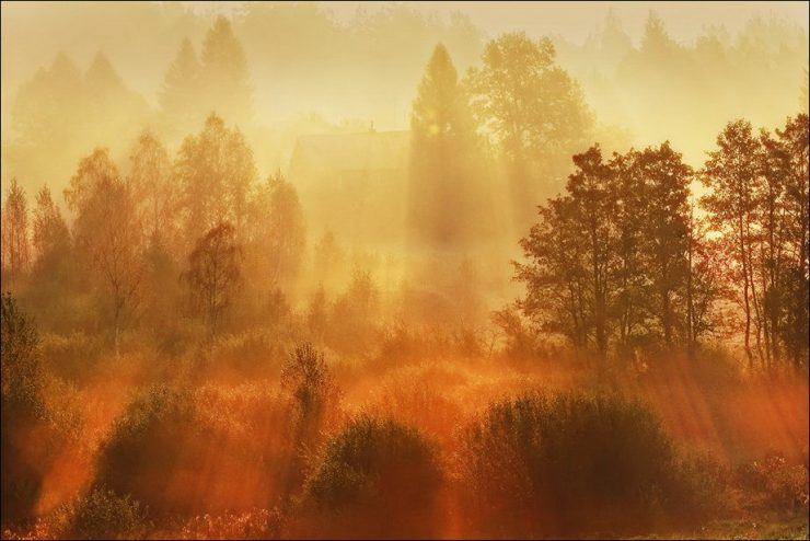 Barwy jesieni 37