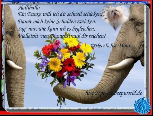 An den Beitrag angehängtes Bild: http://s7.directupload.net/images/120308/gg2sktzw.jpg