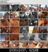 Jenna Confidential (2009/DVDRip) [Club Jenna / Vivid] 725 MB