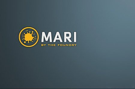 The Foundry Mari 1.4v4 64bit