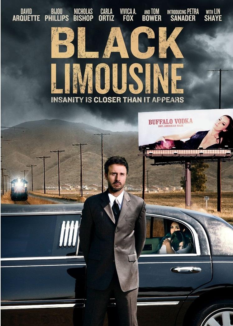 Black Limousine 2010