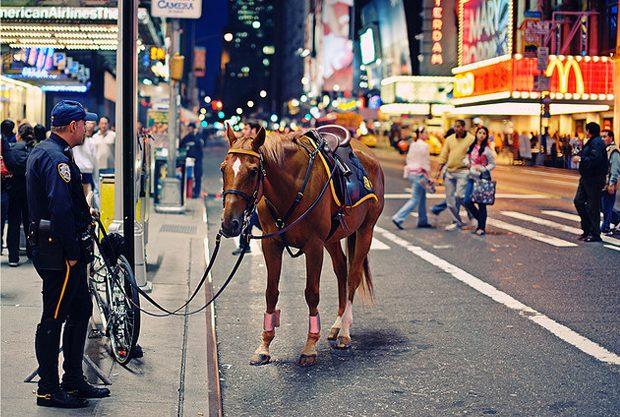 Miasta świata - Nowy Jork 36