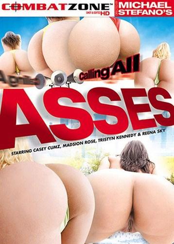Calling All Asses - Combat Zone - (2012/DVDRip/1.36 Gb)