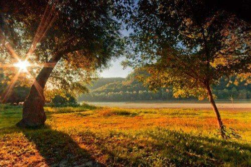 Piękno natury #4 18