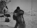Скачать с letitbit  Антарктическая одиссея Шеклтона / Shackleton's Antarctic Adventure (2001) DVDRip