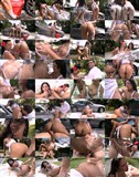 Rachel Starr - Porn-Stars With Huge Asses (2012/SiteRip) [AssParade/BangBros] 463 MB