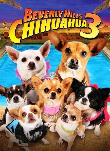 Le Chihuahua de Beverly Hills 3 - Viva La Fiesta ! [FRENCH] [DVDRiP]